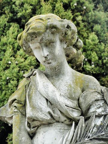 Cementiri de Sant Martí Sarroca segona visita (29) (Copy)
