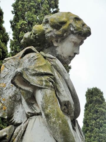 Cementiri de Sant Martí Sarroca segona visita (8) (Copy)