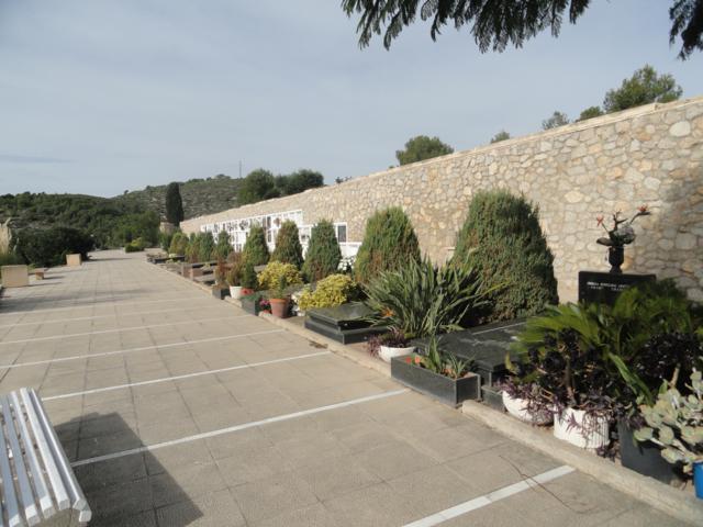 Les Pruelles interior del recinte (2)